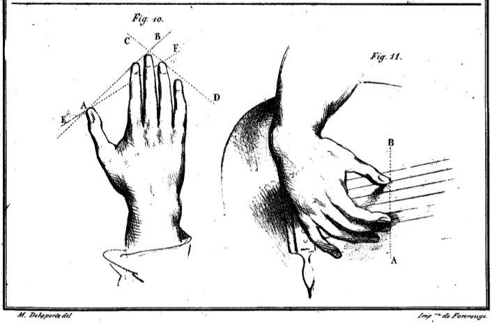 Sor hand illustration
